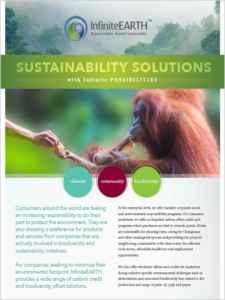 infiniteearth-company-brochure-v1-4-thumbnail